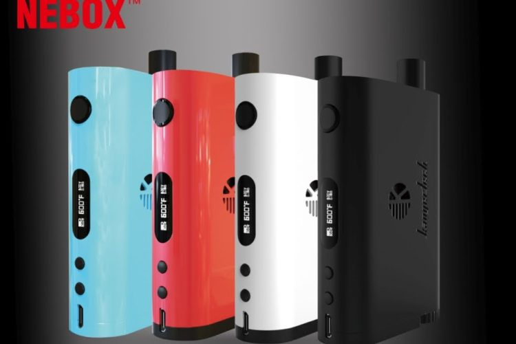 When it comes to liquid vaporizing Electronic Cigarettes, Kangertech is top of the line.  If you